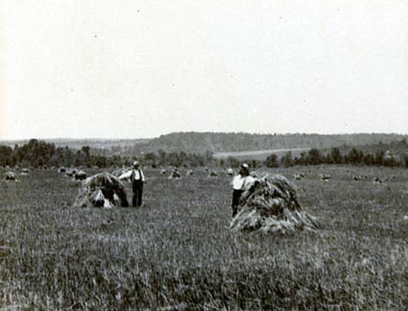 Private Kirkland, Battery D, First Missouri Light Artillery | Dead ...